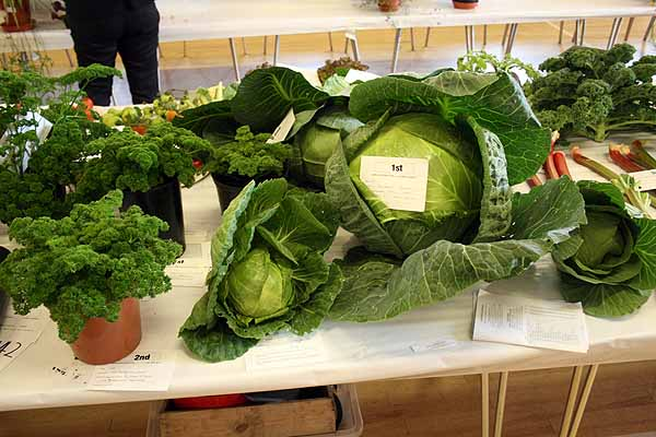 Largs Horticultural Show